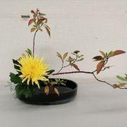 Atelier Ikebana « fleurs vivantes » - Art Floral Japonais
