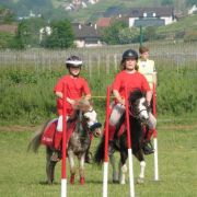 Concours poneys games