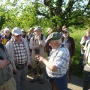 Découvertes naturalistes autour de Sasbach, dans le Kaiserstuhl