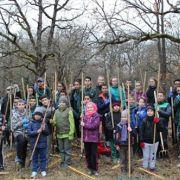 Chantier d'entretien de la forêt du Niederwald