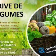 Drive de l\'été (vente de légumes direct producteur)