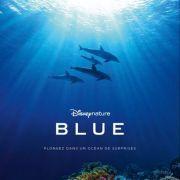 Atelier découverte parent/enfant : Océan - Blue