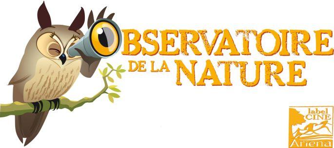 Nuit De La Chauve Souris Colmar Sortie Nature Observatoire De