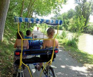Location de vélos Rosalie