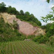 Le Kaiserstuhl, un volcan dans la plaine du Rhin