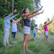 Alsace Ecotourisme : Au coeur de la forêt, au coeur des sens