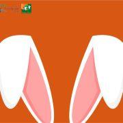 Marché de Pâques - Artisa\'Pâques à Niederbronn-les-Bains 2020