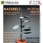 Naturel ? - Sélection d'œuvres du Frac Alsace