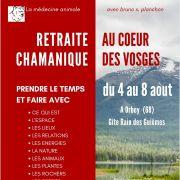Retraite chamanique et ressourcement au coeur des Vosges