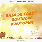 Bain de Forêt et équinoxe d\'automne