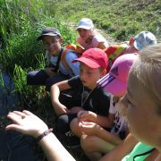 Vacances nature : Vacances à Go G\'eau pour les 6-12 ans