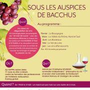 Dégustation de vins et œnologie plaisir