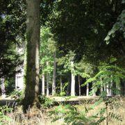 Visite-randonnée : Sur les pas de Charles Bourcart