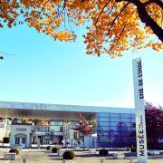 Musée de l\'image et musée d\'art ancien et contemporain