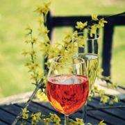 Pique-nique vigneron - Broche campagnarde au Domaine SEILLY