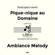 Pique nique Domaine G Metz