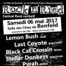 Festival Rock\'n\'Ried 2017