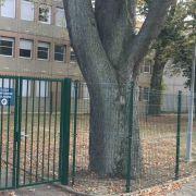 Portes Ouvertes Ecole Montessori Mulhouse