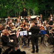 Concert de l\'orchestre symphonique des jeunes de Strasbourg