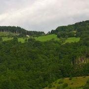 Le paysage forestier et son évolution au fil des siècles