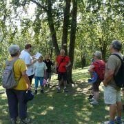 Sortie nature : du Haulenwald au Buckenberg, entre Heidwiller et Illfurth