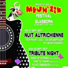 Open Air MEUH\'ZIK Festival 2017 à Soultzeren