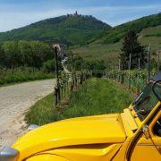 La Route des Vins d\'Alsace à 2CV