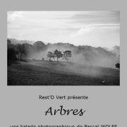 Arbres, une balade photographique de Pascal Wolff
