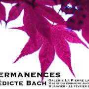 Impermanences - Bénédicte Bach