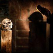 Visite guidée nocturne à la lampe torche