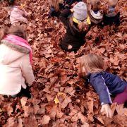 Les enfants goûtent l\'automne