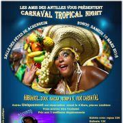 Carnaval 2018 à Niedernai : Carnaval Tropical Night