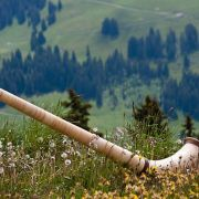 Journées Musicales au Pays de Thann-Cernay : Apéro-concert des Haltinger Alphornbläser