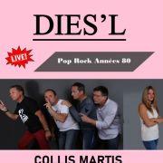 Concert Pop Rock des années 80 avec le groupe Dies'l