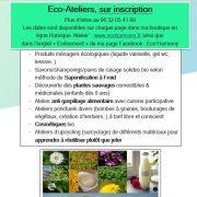 Atelier de découverte des plantes sauvages comestibles et médicinales