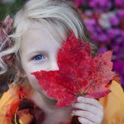 L\'heure d\'automne