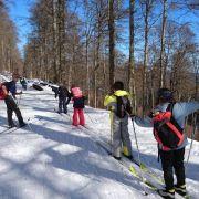 Le retour du trappeur dans les Hautes-Vosges