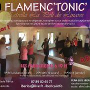 Flamenc'Tonic : dépensez-vous sur un Flamenco Cardio