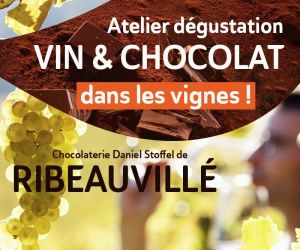 Dégustation Vin & Chocolat dans les vignes