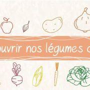 Re-découvrir nos légumes de saison