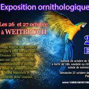 Exposition d\'oiseaux exotiques à Weitbruch