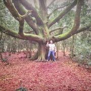 Les arbres nous aident à vivre
