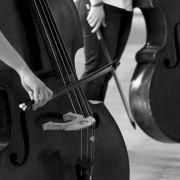 Formation en administration musicale et du spectacle vivant