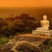 Connaissance du Monde : Sri Lanka, la route des thés