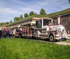 Visite de la ville et des remparts de Neuf-Brisach en petit train touristique