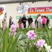 A la découverte des savoureux légumes de la ferme Vierling : devenez locavore !