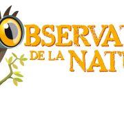 Science participative : les petites bêtes du Neuland
