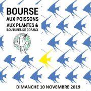 Bourse aux poissons 2019