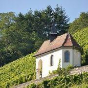 Le Rangen, le vin des volcans