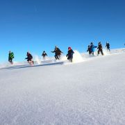 Balade Raquettes à neige au Markstein